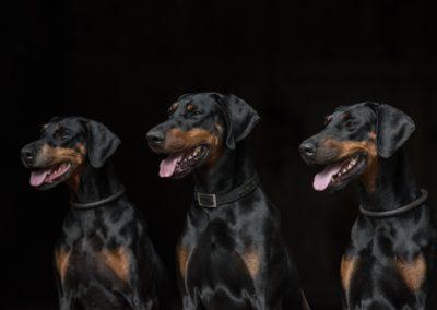 Alina,Dean,Farella-1
